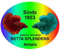 Aquariumvereniging Betta Splendens Almelo